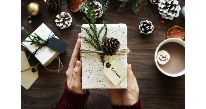 Jei galėtų kalbėti, ko Kalėdų Senelio paprašytų tavo augintinis?