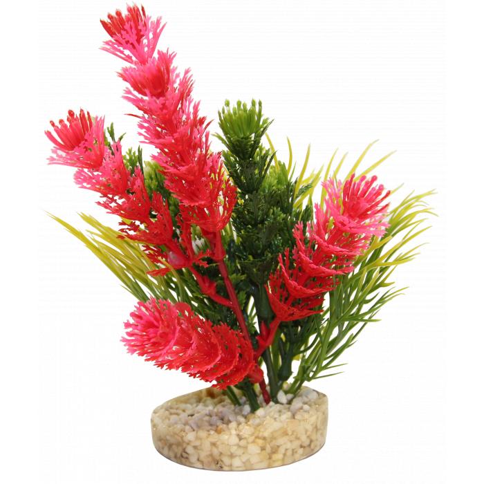 SYDEKO Magic Fiesta Colours Plastikinis augalas
