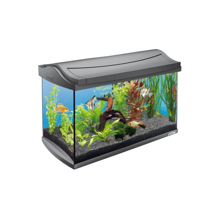 TETRA AquaArt Akvariumas su įranga,