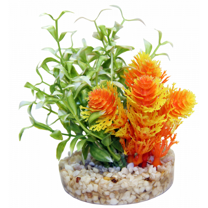 SYDEKO Magic Nano Garden Plastikinis augalas