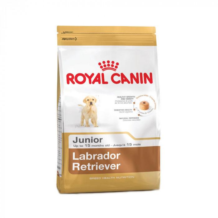 ROYAL CANIN Labrador Retriever Junior 33 Sausas pašaras šunims