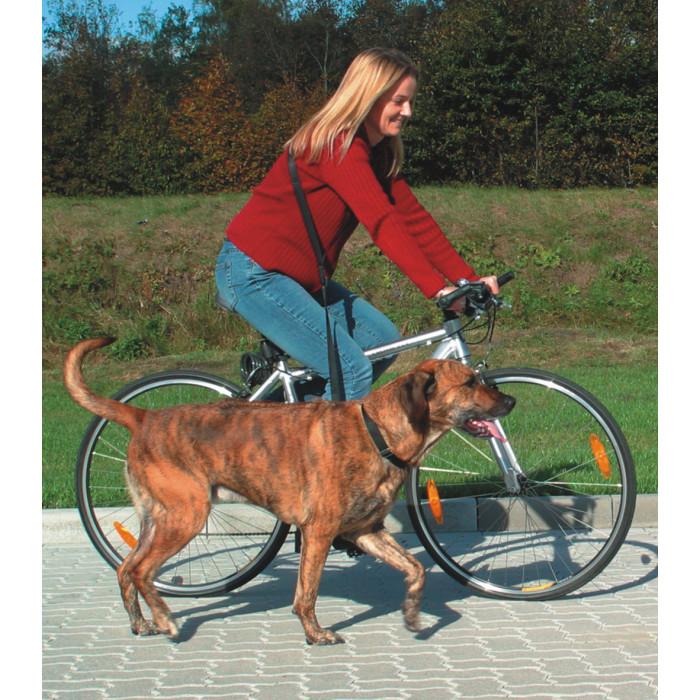 TRIXIE pavadis prie dvirčio