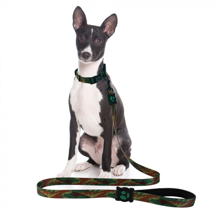 DOCO Loco pavadėlis šunims