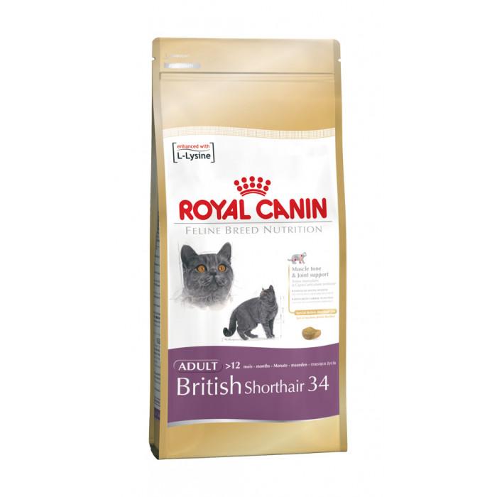 ROYAL CANIN British Shorthair Sausas pašaras katėms