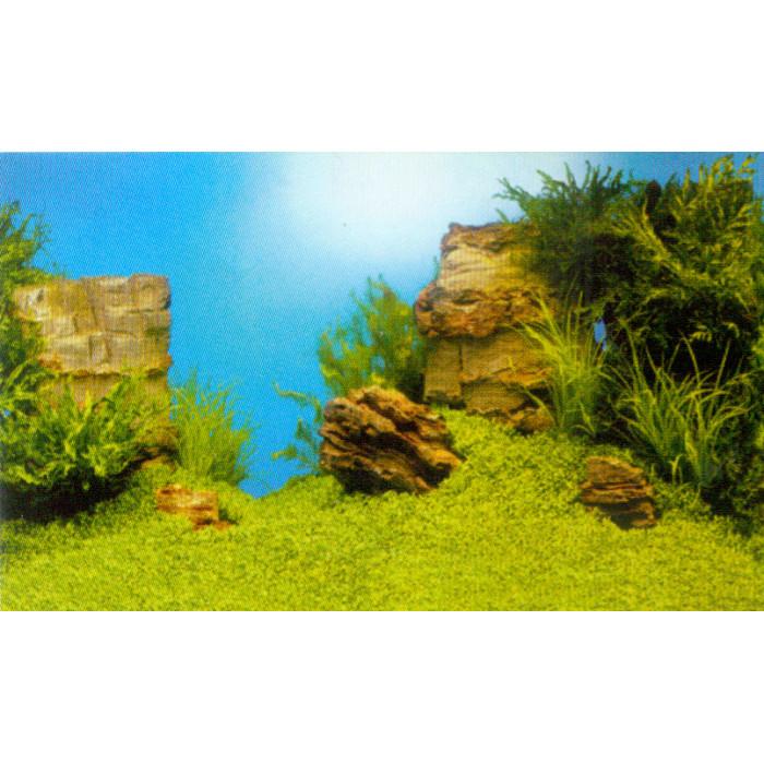 JUWEL Poster Fonas akvariumui dvipusis