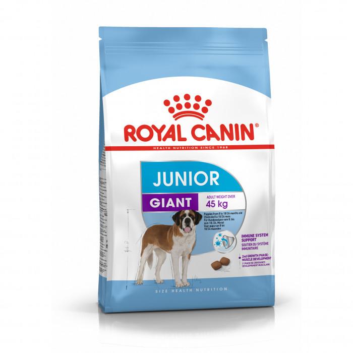 ROYAL CANIN Giant junior pašaras  jauniems šunims