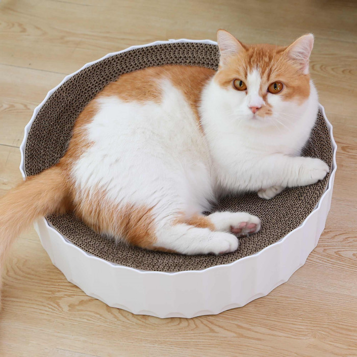 HOOPET Draskyklė katėms