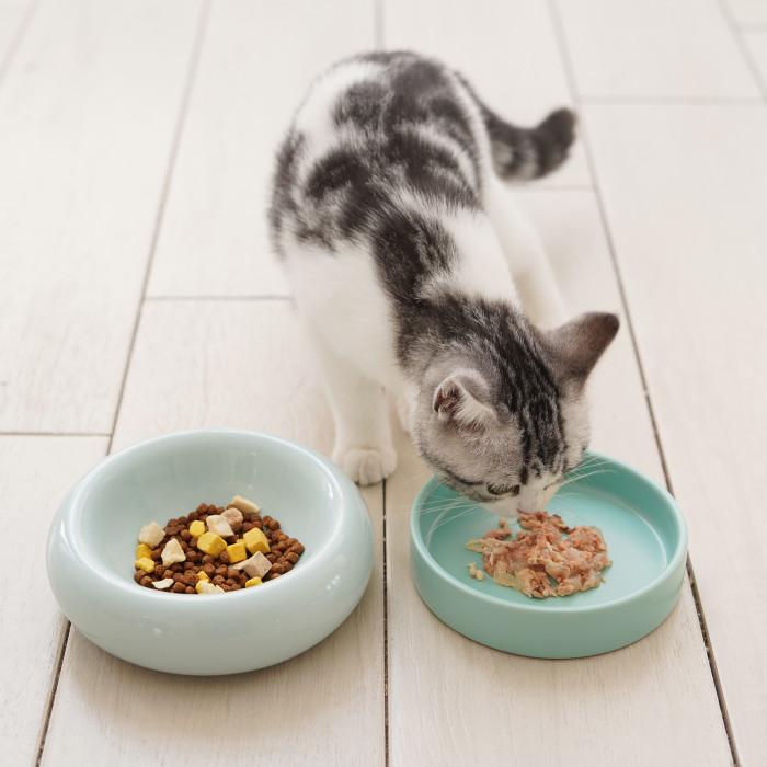 MAKESURE Dubenėlis katėms