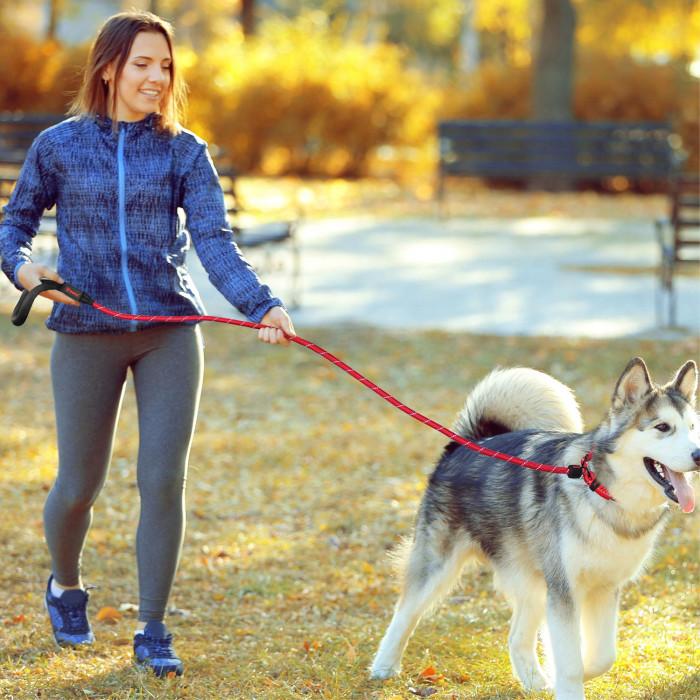 DOCO W/ soft pavadėlis šuniui