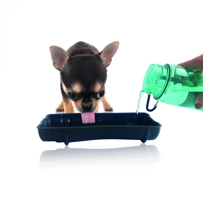 M-PETS Šunų kelioninė gertuvė