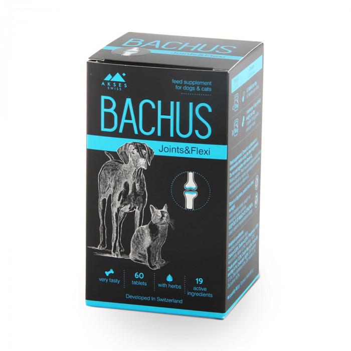 BACHUS Joints&Flexi N60  pašaro papildas sąnariams