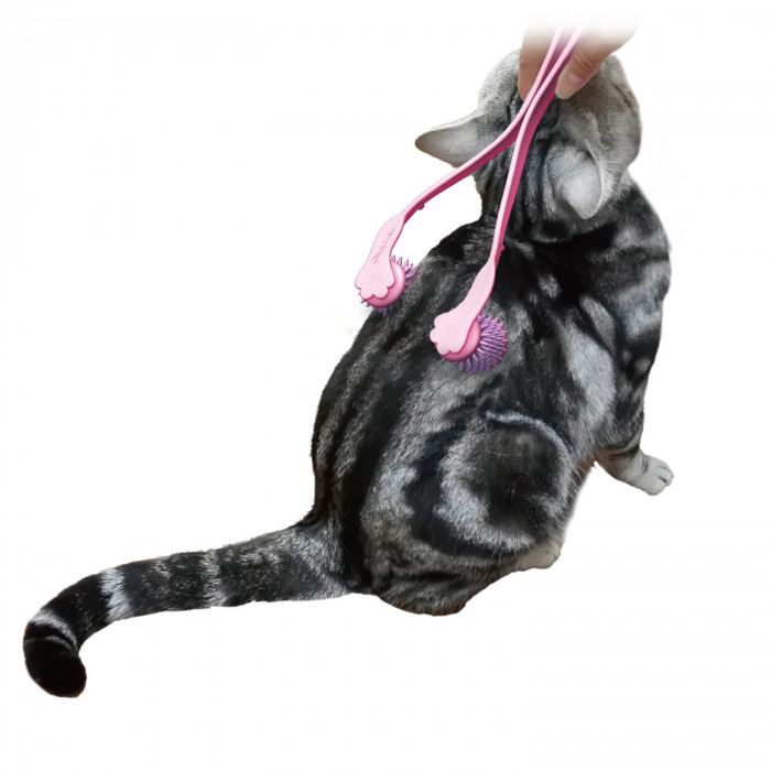DOGGYMAN masažuoklis katei