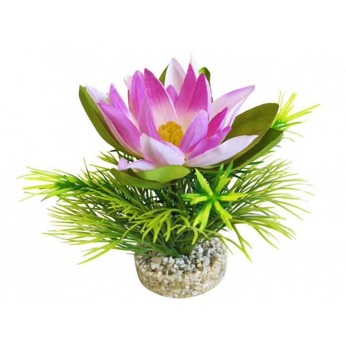 SYDEKO Akvariumų augalas Lotus Flower