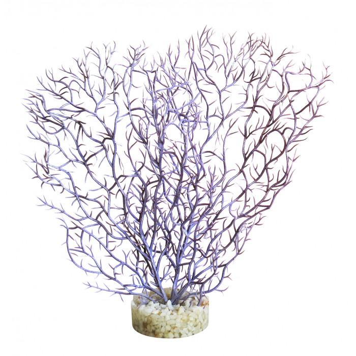 SYDEKO Akvariumų augalas Coral Hedge
