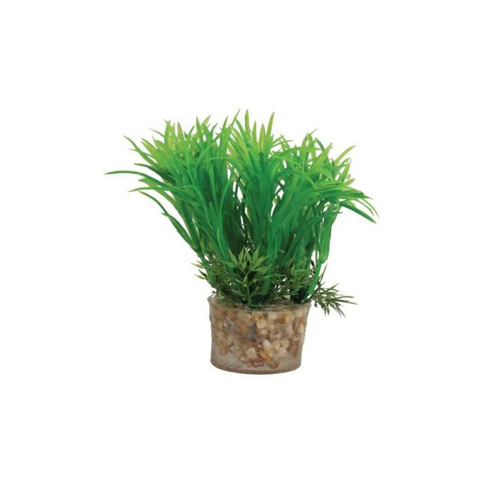 ZOLUX Akvariumų augalas Plastic Plants On Gravels