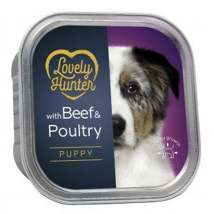 LOVELY HUNTER Puppy Beef and chicken Konservuotas pašaras šunims 150 g