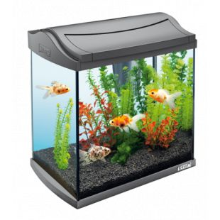 TETRA AquaArt Akvariumas su įranga,  juodas, 20 l