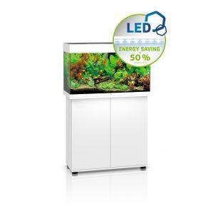 JUWEL LED Rio 125 Akvariumas baltas, 125 l, 81x36x50 cm