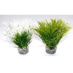 SYDEKO Aquatic Grass Plastikinis augalas 10 cm