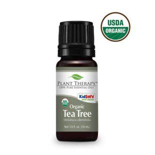 PLANT THERAPY Natūralus arbatmedžio eterinis aliejus 10 ml