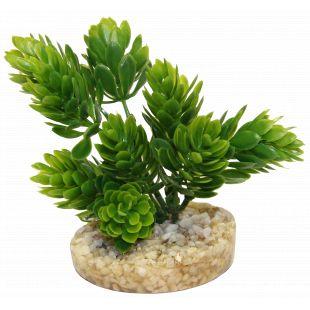 SYDEKO Magic Aqua Naturals Plastikinis augalas 11 cm