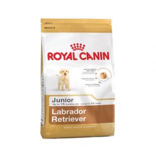 ROYAL CANIN Labrador Retriever Junior 33 Sausas pašaras šunims 3 kg