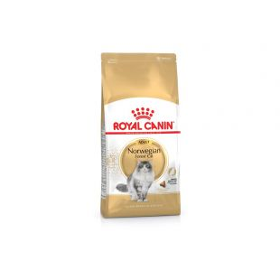 ROYAL CANIN Norwegian Forest cat adult Pašaras katėms 2 kg