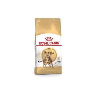 ROYAL CANIN Bengal Pašaras katėms 2 kg