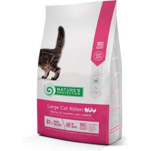 NATURE'S PROTECTION Large cat Kitten Poultry Up to 15 months old Large breed Pašaras katėms 2 kg
