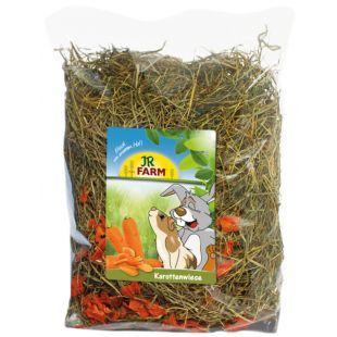 JR FARM Stinging Nettle Meadow Šienas 500 g