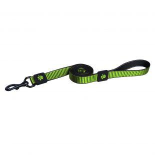 DOCO Martini virvelinis pavadėlis šunims, žalias, S dydis