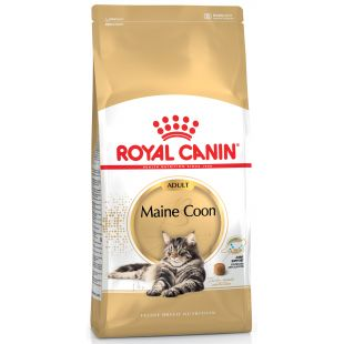 ROYAL CANIN Mainecoon Sausas pašaras katėms 10 kg
