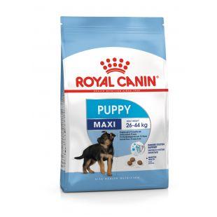 ROYAL CANIN Maxi Puppy Sausas pašaras šunims 15 kg