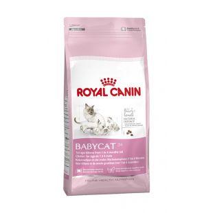 ROYAL CANIN Baby 34 Sausas pašaras katėms 400 g