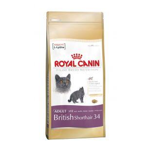 ROYAL CANIN British Shorthair Sausas pašaras katėms 2 kg