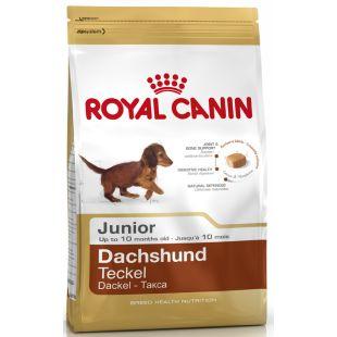 ROYAL CANIN Dachshund junior Pašaras šunims 1.5 kg