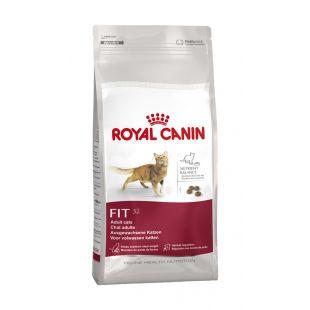 ROYAL CANIN Fit 32  Sausas pašaras katėms 4 kg