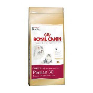 ROYAL CANIN Persian 30 Sausas pašaras katėms 4 kg