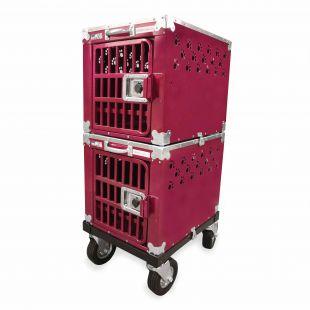 HYDROGROOM 100 Crate gyvūnų narvas dvigubas aviečių spalvos