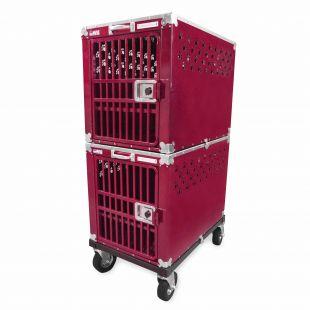 HYDROGROOM 300 Crate gyvūnų narvas dvigubas aviečių spalvos
