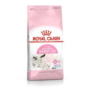 ROYAL CANIN Baby 34 Sausas pašaras katėms 4 kg