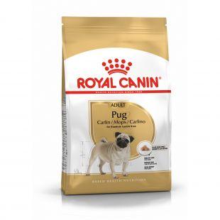 ROYAL CANIN Pug pašaras mopsų veislės šunims 500 g