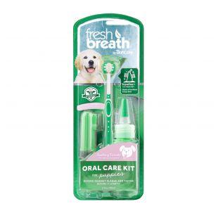 FRESH BREATH Rinkinys dantų prežiūrai, jauniems šunims Žalia