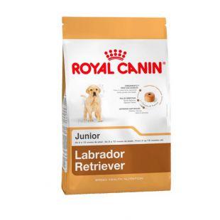 ROYAL CANIN Labrador Retriever Junior 33 Sausas pašaras šunims 12 kg
