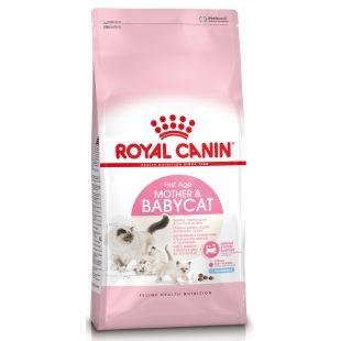 ROYAL CANIN Baby 34 Sausas pašaras katėms 2 kg
