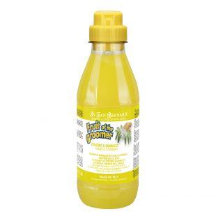IV SAN BERNARD Fruit Of The Groomer GINGER & ELDERBERY SHAMPOOl 500 ml