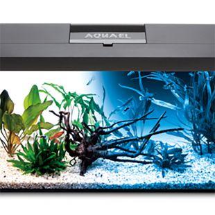 AQUAEL Stačiakampis akvariumas su įranga LEDDY SET DAY & NIGHT juodas, 41x25x25 cm
