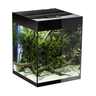 AQUAEL Stačiakampis akvariumas GlOOSY SET CUBE juodas, 50x50x63 cm, 132 l