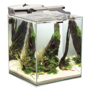 AQUAEL Akvariumas Shrimp Set DUO baltas, 49 l, 35x35x40 cm