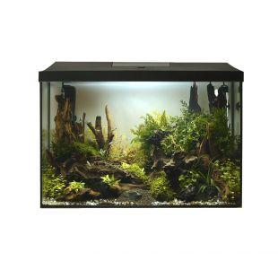 AQUAEL Akvariumo rinkinys LEDDY XL Day & Night juodas, 25 l, 41x25x35 cm